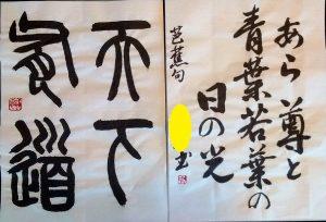 自由・規定漢字仮名交じり